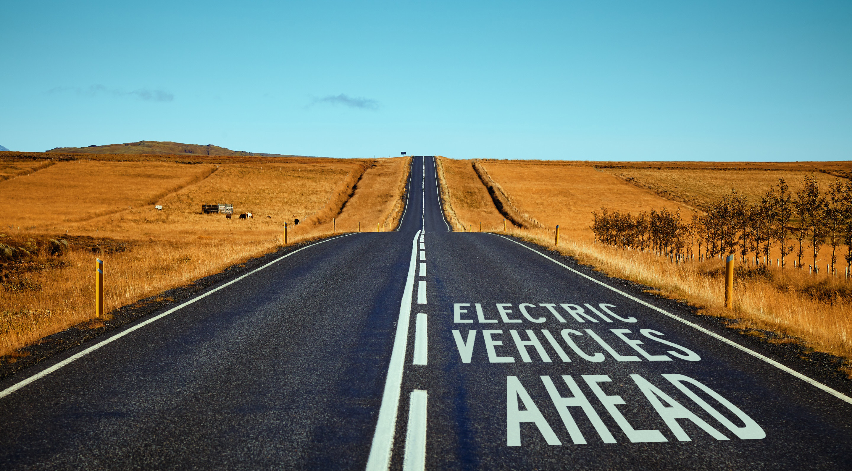 Electric vehicles ahead